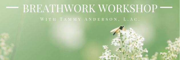 Breathwork Workshop